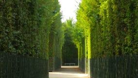 palacio de Versalles, París, Francia, 4k almacen de metraje de vídeo