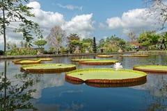 Palacio del agua de Tirtagangga Foto de archivo