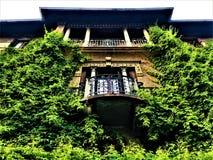 Palacio del estilo de la libertad en Turín, región de Piamonte, Italia Hiedra, naturaleza, arquitectura, arte e historia foto de archivo libre de regalías
