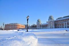 Palacio del ladrillo en el parque de Tsaritsyno en invierno Imagen de archivo libre de regalías