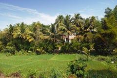 Palacio fa Deao, Goa Immagine Stock