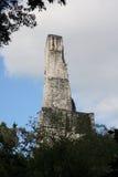 Palacio III Tikal, Guatemala imagen de archivo libre de regalías
