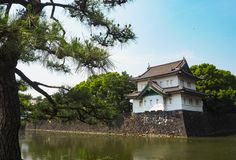 Palacio imperial Japón de Tokio con el árbol del estilo japonés foto de archivo