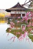 Palacio japonés imagen de archivo
