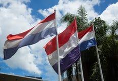 Palacio Legislativo a Asuncion Immagini Stock Libere da Diritti