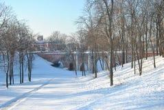 Palacio ruso viejo en Tsaritsyno Imagen de archivo libre de regalías