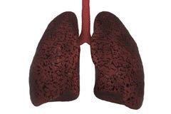 Palaczów płuca, medyczny pojęcie ilustracji