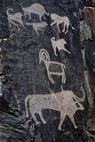 Palaeolithic petroglyphs in the famous Sarmish Gorge. Sarmishsay. Sarmishsay is the largest of many picturesque gorges along the southern slopes of the Karatau Royalty Free Stock Photography