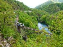 Palagnedrameer en de spoorwegbrug stock afbeeldingen