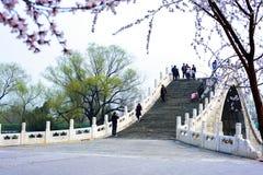 Palais d'été, Pékin, Chine Image libre de droits