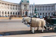 Palais de Burg de Neue dans Hofburg dans la ville de Vienne photographie stock libre de droits