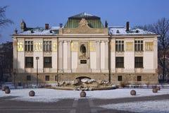 Palais de Cracovie d'art - Pologne Photographie stock libre de droits