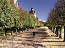 Palais de fontainebleu Paris France Photos stock