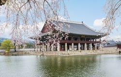 Palais de Gyeongbokgung au printemps Images stock