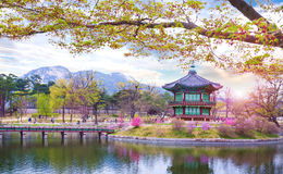 Palais de Gyeongbokgung au printemps, la Corée du Sud photo libre de droits