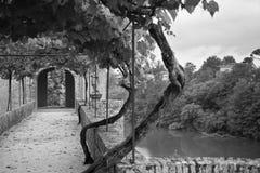 Palais de la Berbie Gardens Alley at Albi, Tarn, France. Filtered bw shot Royalty Free Stock Photos