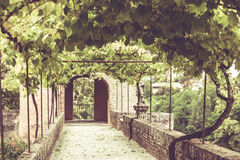 Palais de la Berbie Gardens Alley at Albi, Tarn, France Stock Photos