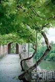 Palais de la Berbie Gardens Alley at Albi, Tarn, France Royalty Free Stock Photography