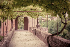 Palais de la Berbie Gardens Alley at Albi, Tarn, France Royalty Free Stock Photos