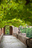 Palais de la Berbie Gardens Alley at Albi, Tarn, France Stock Images