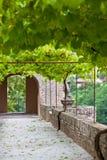 Palais de la Berbie Gardens Alley at Albi, Tarn, France Royalty Free Stock Image
