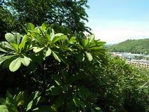Palais de montagne de Wang photos stock