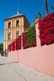 Palais de San Telmo de mur Photographie stock libre de droits