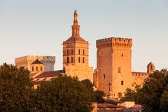 Palais des Papes in Avignon, de Provence, Frankrijk Stock Foto