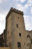 Palais des Papes in Avignon, Royalty Free Stock Photo