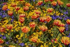 Palais et jardin de Mirabell dans le printemps Salzbourg, Autriche photographie stock