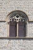 Palais papal. Viterbe. Le Latium. L'Italie. photographie stock libre de droits