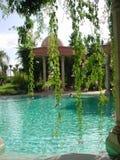 Palais Rhoul pool 1 stock images
