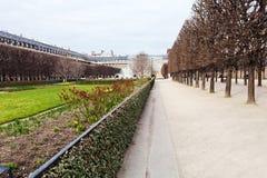 Palais-Kunglig person trädgård i Paris Arkivfoton