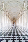 Palais royal de Venaria Image libre de droits