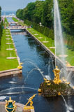 Palais St Petersburg, Russie de Peterhof Abaissez les fontaines grandes de cascade de parc Le palais de Peterhof inclus dans les  Photo stock