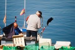 Palamos, Catalonia, may 2016: fisherman inspect and repairing fi Royalty Free Stock Images