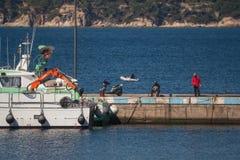 Palamos, Catalonia, may 2016: Fishermen on pier Royalty Free Stock Photos