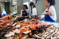 Palamos, Catalonia, may 2016: seafood market Royalty Free Stock Image