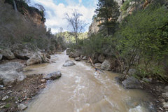 Palancia river. Royalty Free Stock Photography