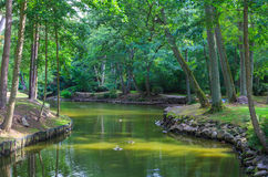 Palanga Botanical Park pond in summer midday Royalty Free Stock Images