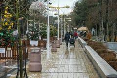 Palanga, Litouwen, Europa - Dec 17, de straat van 2017 in de wintervakantie Royalty-vrije Stock Afbeelding