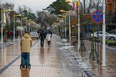 Palangastraat in de winter Stock Fotografie