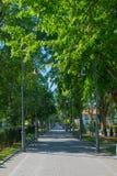 Palangastraat in de zomer Royalty-vrije Stock Afbeelding