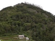 Palaniheuvels met groene bomen en huizen op de vallei royalty-vrije stock afbeelding