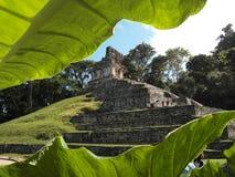 Palanque, alter Mayastandort stockfoto