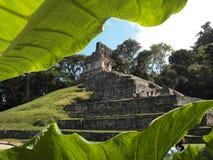 Palanque : ville antique de Maya photographie stock libre de droits
