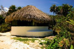 Palapa on a Beach Royalty Free Stock Image