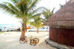 Palapa de madeira tropical da cabana em Cancun México Fotos de Stock Royalty Free