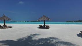 Palapa ed i lettini dal mare sulle Maldive tirano archivi video