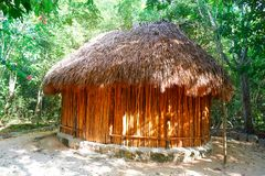 Palapa hut traditional cabin in Riviera Maya. Palapa hut traditional cabin house in Riviera Maya of Mexico Royalty Free Stock Image